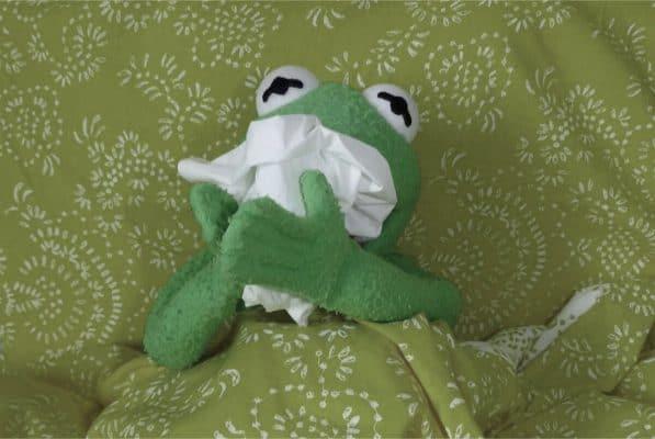 Erkälteter Kermit