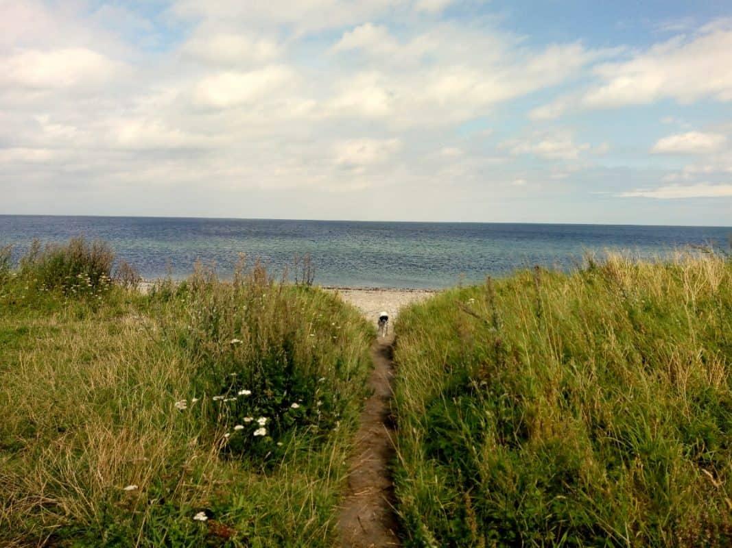 Naturschutzgebiet Schmoel an der Ostsee